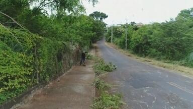 Prefeitura de Rio Preto limpa avenida que estava em más condições - A Prefeitura de Rio Preto (SP) mandou uma equipe de limpeza na Avenida Nelson da Veiga, que foi flagrada em más condições.