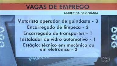 Confira as vagas de emprego em Aparecida de Goiânia - Há 80 vagas de corretor de imóveis e 50 para operador de empilhadeira.