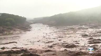 Boletim: Sobe para 37 o número de mortos na tragédia em Brumadinho - Subiu para 37 o número de mortos na tragédia em Brumadinho,192 pessoas foram resgatadas até agora, mais de 250 seguem desaparecidas.