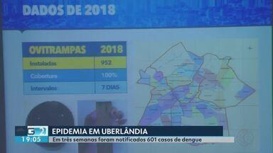 Uberlândia enfrenta epidemia de dengue no primeiro ano de 2019 - Em três semanas foram notificados 601 casos de dengue
