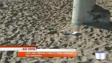 Lixo nas praias coloca em risco os animais - Muita gente aproveita a praia e acaba deixando para trás muita sujeira.