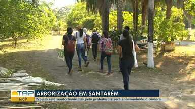 Projeto apresenta resultados de áreas para reflorestamento urbano de Santarém - Um projeto de lei está sendo elaborado pela prefeitura para respaldar todo e qualquer procedimento no processo de arborização.