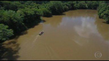 Botelim: Análise da água do Rio Paraopeba já indica risco para a saúde, diz governo de MG - Número oficial de mortos no rompimento da barragem em Brumadinho ainda está em 99, mas nesta quinta-feira (31) os bombeiros tiraram pelo menos mais um corpo dos escombros. Foram identificadas 67 pessoas e 257 estão desaparecidas.