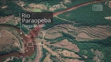 Águas do Rio Paraopeba têm risco para a saúde, diz governo de MG - Rio foi contaminado pelos rejeitos de mineração que vazaram da barragem número 1 da Vale em Brumadinho. G1 tem animação que explica o caminho da lama.