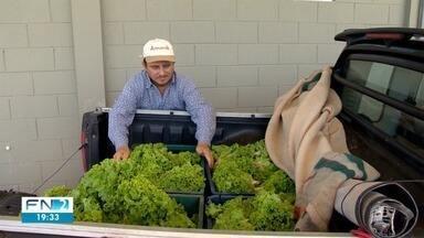 Isenção do ICMS beneficia produtores rurais - Medida começou a valer a partir desta sexta-feira (1º).