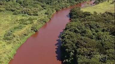 SOS Mata Atlântica analisa a qualidade da água do Rio Paraopeba - A repórter Mariane Salerno acompanha a expedição da ONG e traz as últimas novidades sobre a pesquisa.