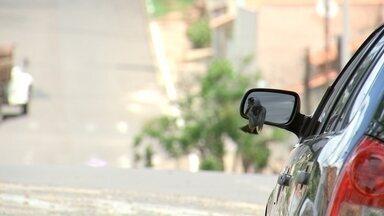 Revista visita Fernão e Gália - Bloco 3 - Marcão conversa com o paratleta Juliano, que brilhou na Copa do Mundo com um exoesqueleto. Depois, ele visita dois pontos turísticos na zona rural do município. Nossa produção também bateu um papo com o elenco do filme Minha Fama de Mau.