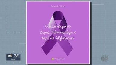 'Fevereiro Roxo' lembra luta contra lúpus, Alzheimer e fibromialgia - 'Fevereiro Roxo' lembra luta contra lúpus, Alzheimer e fibromialgia