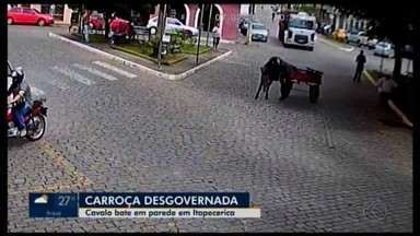 Câmera de segurança registra carroça desgovernada em Itapecerica - O cavalo que conduzia a carroça se assustou, bateu em parede e saiu em disparada.