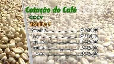 Confira a cotação do café no Espírito Santo - Veja como se comportou o mercado durante a semana.