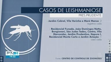 Presidente Prudente registra 16 casos de leishmaniose em 2019 - Saiba quais bairros tiveram animais infectados com a doença.