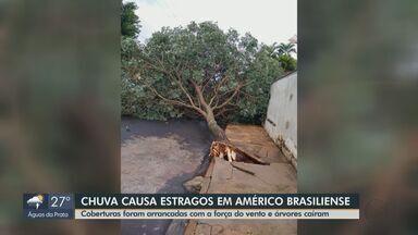 Chuva causa estragos em Américo Brasiliense - Coberturas foram arrancadas com a força do vento e árvores caíram.