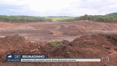 Um mês depois da tragédia de Brumadinho, Bombeiros fazem buscas em área não acessada - Mais de 30 dias depois do rompimento da barragem da Vale em Brumadinho, o Corpo de Bombeiros ainda faz buscas em novas áreas da Lama, para encontrar desaparecidos.