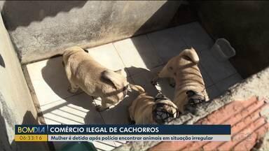 Mulher é detida após polícia encontrar animais em situação irregular - Na casa dela, a polícia encontrou um comércio ilegal de cachorros.