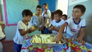 Projeto Escola de Comer revoluciona qualidade da merenda escolar em Paraty - Em Paraty, no litoral do Rio de Janeiro, as crianças estão comendo mais verduras, frutas e legumes na merenda escolar. Pratos servidos nas escolas públicas já garanham até concurso gastronômico.