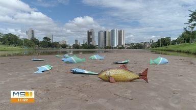 Lagos de Campo Grande pedem socorro - Assoreamento ameaça o Lago do Parque das Nações Indígenas e o Lago do Amor.