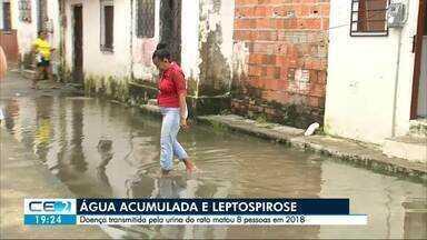 Água acumulada traz risco de leptospirose - Doença transmitida pela urina do rato matou oito pessoas em Fortaleza em 2018.