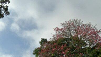 Alto Tietê deve ter dias de sol forte - Previsão é que temperatura aumenta durante a manhã o que deve provocar chuvas no período da tarde.