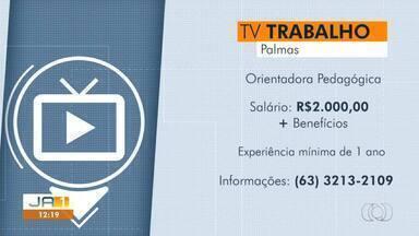 Confira as vagas de emprego disponíveis em cidades do Tocantins - Confira as vagas de emprego disponíveis em cidades do Tocantins