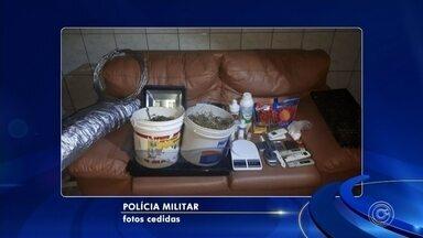 Polícia encontra casa utilizada para produção de skunk em Salto - A Polícia Militar encontrou uma casa que servia como laboratório para a produção de skunk em Salto (SP).