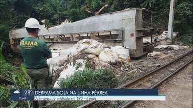 Empresa derrama 120 t de carga na Serra do Mar, não limpa e é multada em R$ 190 mil - Ibama autuou a Rumo Logística por dois acidentes na linha férrea na região de Cubatão, no litoral paulista. Empresa alegou que mau tempo atrapalhou a retirada dos resíduos.