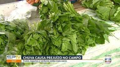 Chuva estraga plantações e preços sobem nas feiras - As verduras cubiram 42,72%. Legumes aumentaram 16% e as frutas, 3,6%.