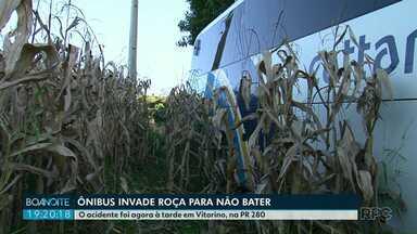 Ônibus invade roça para não bater - O acidente foi em Vitorino, hoje à tarde.