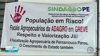 Compradores negociam sem a guia de transporte animal em feira de Caruaru - Adagro está em greve