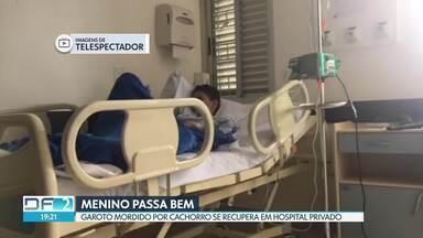 Menino que foi mordido por um cachorro em Ceilândia tem melhora no quadro - Ele foi transferido do Hospital Regional de Ceilândia para um hospital particular depois que o caso foi mostrado no DF2.