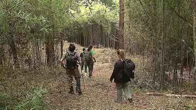 Secretaria de Saúde e Zoonozes saíram procurar macacos, em Ponta Grossa - A busca foi depois que um macaco foi encontrado morto na região.