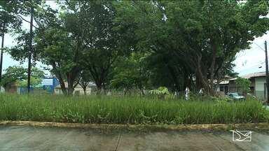Moradores reclamam de falta de infraestrutura em bairro em São Luís - Praça no Habitacional Turu está cheia de mato e limo e as ruas cheias de buraco.