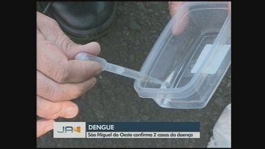 São Miguel do Oeste confirma dois casos de dengue - São Miguel do Oeste confirma dois casos de dengue