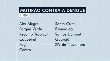 Mutirão de limpeza contra a dengue começa na semana que vem em Cascavel - A orientação é para que os moradores limpem os quintais e coloquem o lixo em frente de casa.
