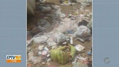 Moradores reclamam de grande quantidade de lixo descartado em córrego de Campinas - Área no entorno também é alvo de descarte irregular feito por moradores.
