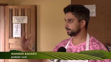 Produtores de café fazem curso para aprimorar colheita dos grão na lavoura em Caratinga - Segundo IBGE, a produção das sacas deste ano diminui em 10% em relação à 2018.