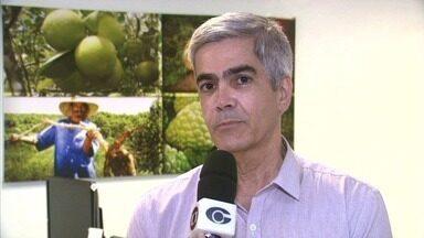 Fruticultura será tema de seminário em Maceió - Especialistas no setor vão apresentar as novas pesquisas, tecnologias e possibilidades de investimento na área.