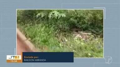 Veja flagrantes e denúncias na participação dos telespectadores no Jornal Tapajós - Envie fotos e vídeos para (93) 99122 9460.