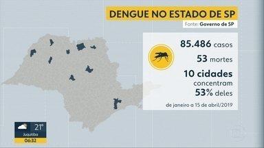 Número de casos de dengue chega a casa de 85 mil no estado de SP - 53 pessoas já morreram.