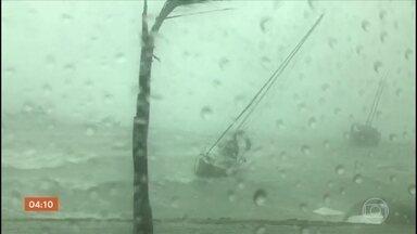 Prefeitura de Ilhabela (SP) decreta estado de emergência por causa de temporal - Na capital paulista, a chuva e o vento forte derrubaram muitas árvores e vários locais ficaram sem energia elétrica.