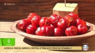 Meu Pé de Fruta: Família de Florianópolis planta acerola - Conheça método que produz frutas mais rapidamente