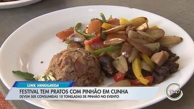 Festival do Pinhão de Cunha tem mais de 30 receitas - Veja como é a festa.