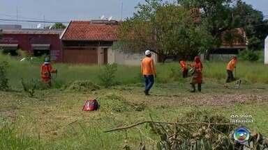 Segundo mutirão de limpeza de Bauru recebe ajuda do Exército no combate à dengue - O objetivo da reunião entre o tiro de guerra e as secretarias e repartições do município é eliminar possíveis criadouros do mosquito.