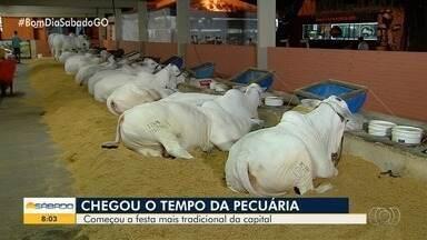 Veja como foi a primeira noite da Pecuária de Goiânia - Evento ocorre até o dia 26.