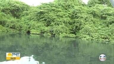 Pessoas que passam pelo Rio Capibaribe denunciam sujeira e mau cheiro - Segundo eles, situação piorou nos últimos 90 dias.