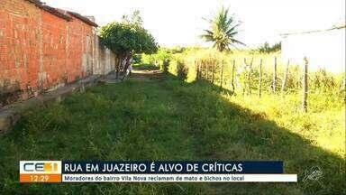 Moradores do bairro Vila Nova reclamam de mato e bichos no local - Saiba mais em g1.com.br/ce