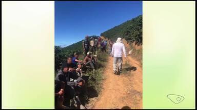 Fiscalização encontra 132 trabalhadores rurais em situação irregular nos cafezais do ES - A fiscalização encontrou irregularidades em propriedades, localizadas nos municípios de Sooretama, Pancas, Santa Teresa, São Roque e Vila Valério.