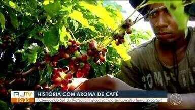 Fazendas do Sul do Rio voltam a cultivar café - Grão tradicional deu fama à região.