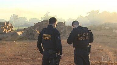Dez pessoas foram presas em operação contra extração ilegal de madeira em Rondônia - Força tarefa prendeu acusados de extração ilegal na reserva indígena Karipuna. Um empresa que vendia lotes invadidos foi fechada.