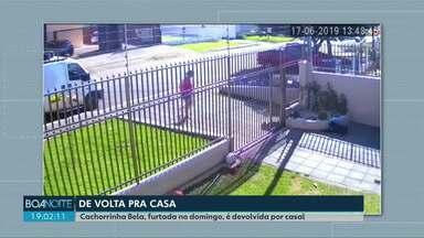 Cachorrinha Bela, furtada no domingo (18/06), é devolvida - A cachorrinha foi devolvida pelo mesmo casal que a levou.