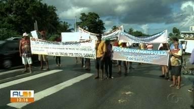 Pescadores de Marechal cobram esclarecimentos sobre causa da mortandade de peixes - Peixes e crustáceos morreram na Lagoa Manguaba.